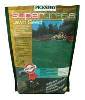 Суперграс (Supergrass)